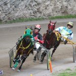 Harness Pony Final Bermuda Feb 18 2017 (14)