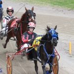 Harness Pony Final Bermuda Feb 18 2017 (3)