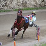 Harness Pony Final Bermuda Feb 18 2017 (5)