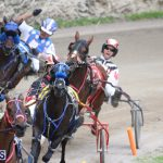 Harness Pony Final Bermuda Feb 18 2017 (7)
