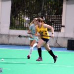 Women's Division Hockey Bermuda Jan 29 2017 (13)